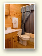 Picture of Cabin batthroom.